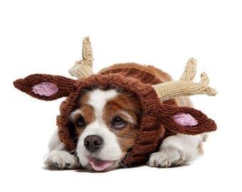 Reindeer Dog Snood | Knit Crochet Dog Hat | Dog Costume | Winter Scarf | Ear Warmer