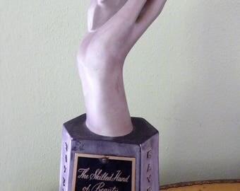 Hand Display Hair Styling Award.