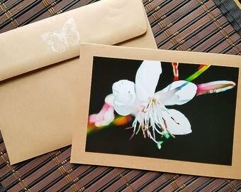 Flower Blank greeting card Garden