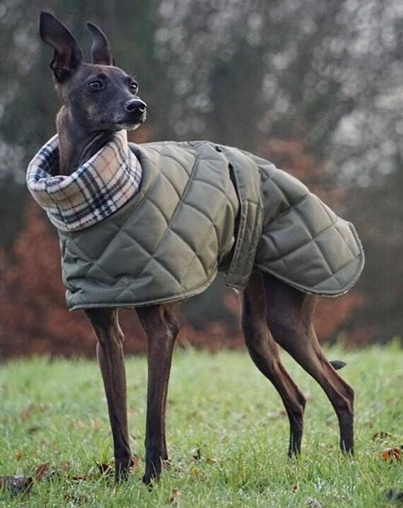Italian greyhound winter waterproof fleece lined coats and jackets