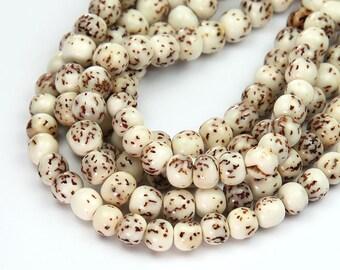 Natural Salwag Nut Beads, White, 5-6mm Round - 15.5 inch Strand - eS907-6