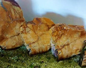 Quartz Aquascaping Rock Set Sliced Natural Sandstone Earthy Browns 5 pcs Free US Shipping #ST121