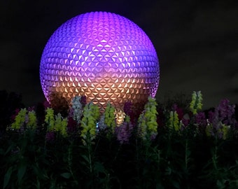 Disney World Epcot Ball 8X10 photo, Spaceship Earth, Disney Print, Disney Wall Art, Night Photography, Architecture Print, Snapdragon Fower