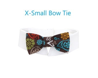 Fall Flower and Paisley Bow Tie, Necktie, or Bow on a Shirt Style Collar for both Dogs & Cats