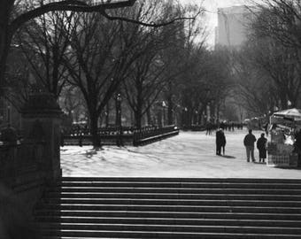 New York City, Central Park, photo, home decor, wall art, new york, nyc, Manhattan,