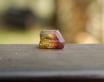 Terminated Bi-Color Watermelon Tourmaline