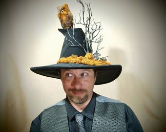 """Wizard Hat """"Archimedes"""" One of a Kind"""