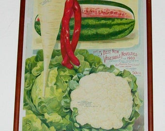 Framed Vintage Lithograph of Early 1900's William Henry Maule Seed Catalog