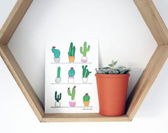 My Cacti Problem Postcard
