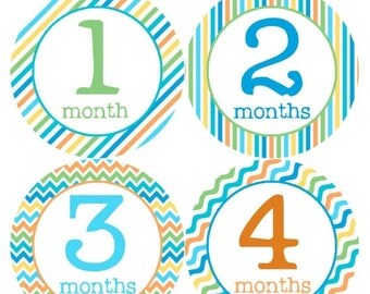 Monthly Baby Milestone Stickers Baby Boy Baby Shower Gift One-Piece Baby Stickers Monthly Baby Stickers Baby Month Sticker 193