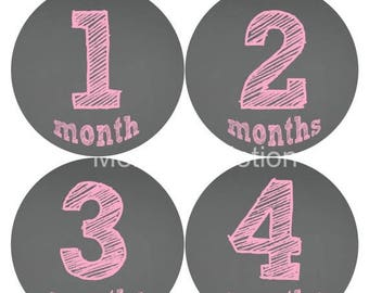 Monthly Baby Stickers Baby Month Stickers Baby Girl Month Stickers Monthly Photo Stickers Monthly Milestone Stickers 124