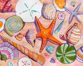 Seashell Painting, Seashell Print, Shell Watercolor, Sand Dollar, Starfish, Beach Print, Seashell Print, Negley 5 x 7, 8 x 10, 11 x 14