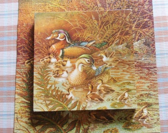 Springbok Family Outing Puzzle 500 Piece Puzzle PZL2109 Family of Ducks Jigsaw Puzzle Vintage