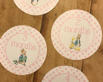 Girl Monthly Growth Stickers Baby Month to Month Stickers Set of 12 Months-Peter Rabbit Beatrix Potter 1-12 months Baby Shower Gift