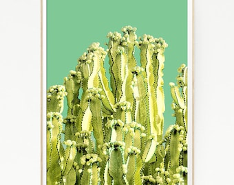 Cactus Print Poster Wall Decor Tropical Retro Vintage Colour Photo Nature Minimalist Art Sun Leaf Succulents Green Desert West Photo 1018