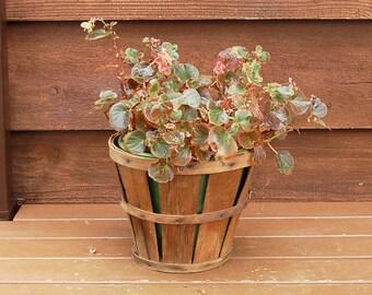 Split Wood Fruit Basket, Vintage Harvest Basket, Split Wood Market Basket, Flower Basket, Orchard Basket, Storage Basket