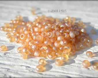 Etched Crystal Full Cesian (22580) 11/0 MIYUKI seed beads