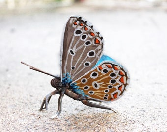 Metal Butterfly Sculpture, Scrap Metal, Adonis Blue Butterfly, Oil Painted, Original Artwork