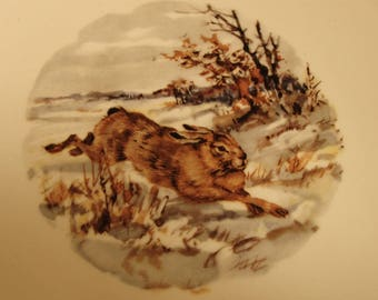 "RABBIT in WOODS PLATE Schumann Arzberg Germany Bavaria Collector Hanging Decor 7-3/8"" Gold Trim"