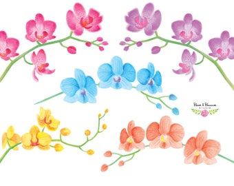 Watercolor Orchid Clip Arts