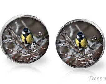 Stud Earrings Frosted 5