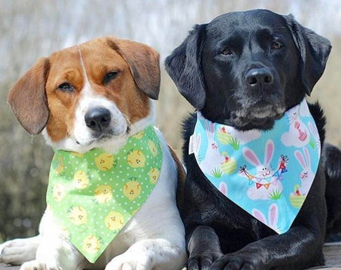 Featured listing image: Spring Chicks on Green Dog Bandana    Lime Personalized Easter Pet Scarf    Puppy Gift by Three Spoiled Dogs