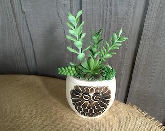 Faux succulent arrangement in an owl container/ owl succulent/ owl arrangement/ faux succulent arrangement/ faux succulent/ owl decor/ owls