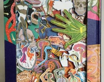 The Human Body - Book Art - Sculpture de Livre - Collage - 3D - Sculpture - Medical - Surgical - Body - Skeleton - Bones - USA - Detroit