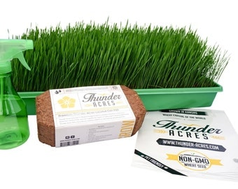 Complete Wheatgrass growing kit, Heavy Duty Blue Growing trays, Non-GMO Seed, Organic Coco Coir, Organic Fertilizer, Instructions (Green)