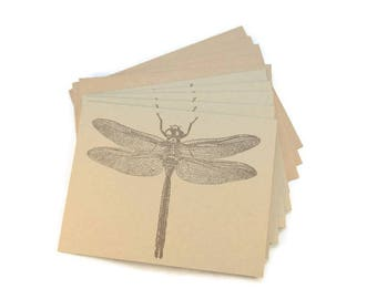 Blank Note Cards, Large Dragonfly, Stationery Set, Nature Themed Notecards, Rustic Notecards, Quirky Notecards, Insect Theme, Notecard Set