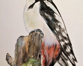 "Great Spotted Woodpecker 12"" x 10"" Original watercolour painting"