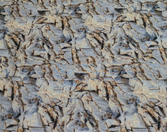 Running Wild-Rocks Cotton Fabric from Quilting Treasures