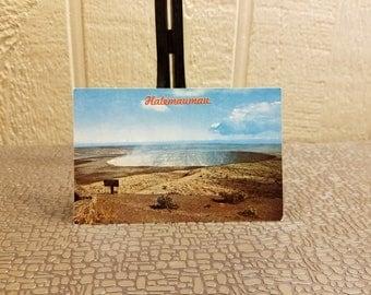 Halemauman Crater Hawaii Volcanoes National Park Vintage Chrome Color Postcard 1970's