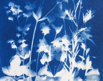 Original Unique Botanical Art Cyanotype Print of Garden flowers and leaves