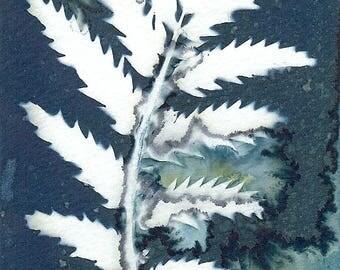 Original Unique Botanical Art Cyanotype Print of Wildflower Leaves