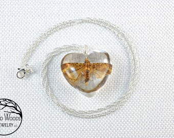 Dried Moth Charms, Dried Moth Jewelry, Dried Moth Necklaces, Moth Jewelry, Moth Necklaces, Real Moth Necklaces, Moth Pendants, Moths