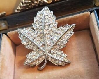 Vintage Maple Leaf Brooch - pave set with sparking ab rhinestones