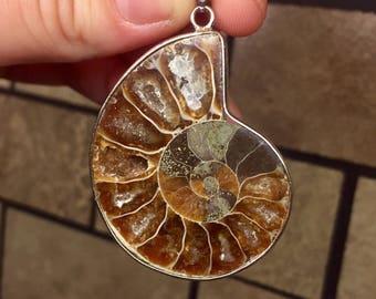 Genuine Ammonite Fossil Pendant