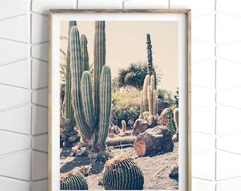 Cactus Printable Print, Cactus Desert Decor, Cactus Decor Print, Cactus Desert Art, Southwestern Decor, Desert Wall Art, Cactus Desert Print