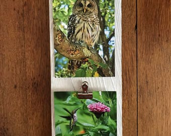 Frame Rustic Wood Picture Holder (for two images)