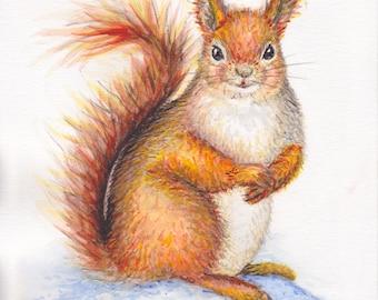 """Original watercolor painting (watercolor) """"Sweet squirrel"""""""