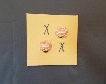 XOXO with Pink Roses Wall Art