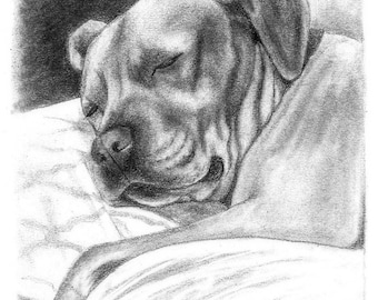 Pet Portrait Custom Gift Idea Special Size & Pricing Option on Hand Drawn Sketch of Your Pet