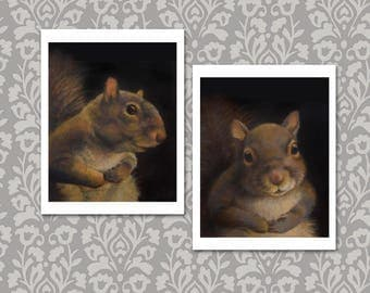 Squirrel Portrait Notecards - Squirrel Cards -Squirrel Art - Squirrel Print