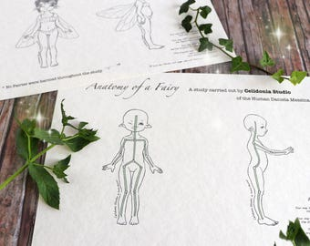 Fairy Pattern reference for ooak Art Dolls - Celidonia's Original Drawings - JPEG Instant Download