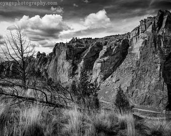 Mountain Photography, Rustic Landscape, Black and White Photography, Art For Men, Rock Climbing, Dead Trees, Grassland, Western Landscape
