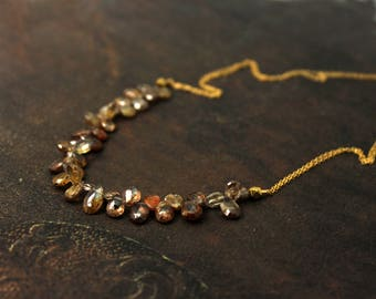 Earthtone Necklace. Briolette Necklace. Teardrop Gemstone Necklace in Warm Browns.  Multi Gemstone Necklace. N-2356.