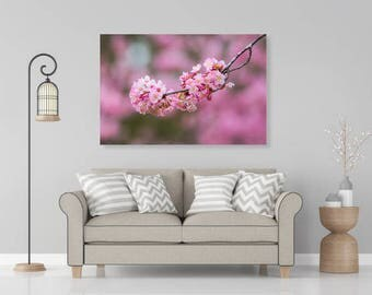 Spring Sakura Pink Cherry Blossoms Hanging Branch, Flower Nature Photography, Wallart Photo Printable, Home Office Decoration, Gift