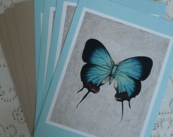 """Set of 4 """"Blue Butterfly"""" blank cards"""