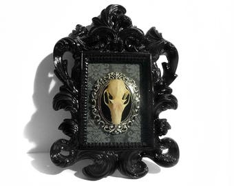 Taxidermy Bat Decoration - Real Bat - Gothic Home Decor - Gothic Art - Black Baroque Frame - Halloween Decor - Bat Decoration - Oddities